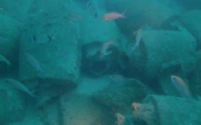 Alla scoperta del Museo Navale Romano di Albenga