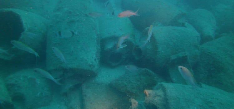 Le anfore della nave romana di Albenga